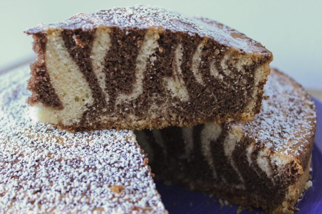 Tortazebra5
